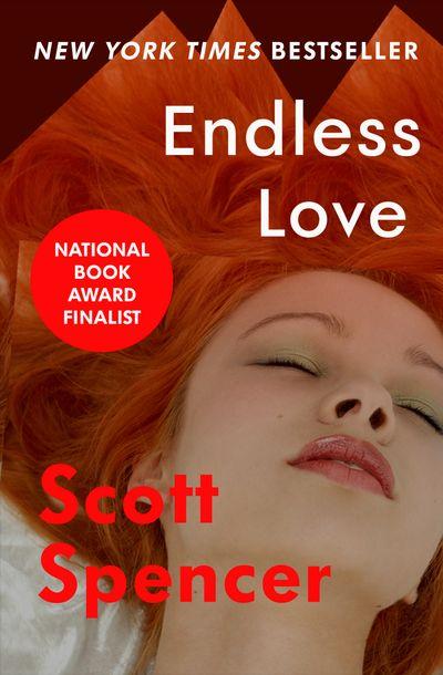 Endless Love Scott Spencer
