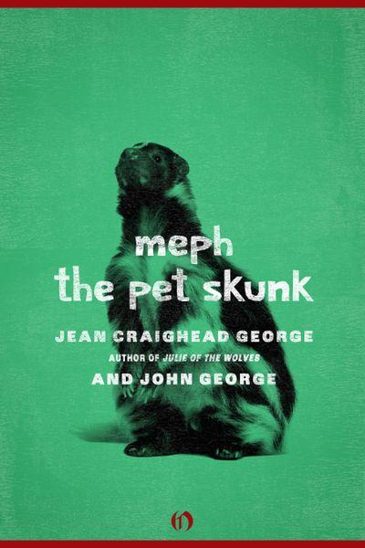 Meph, the Pet Skunk