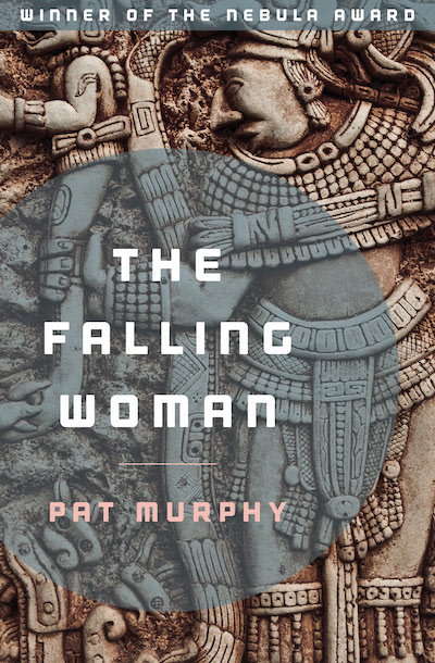 Buy The Falling Woman at Amazon