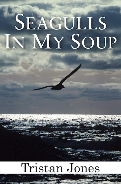 Buy Seagulls in My Soup at Amazon