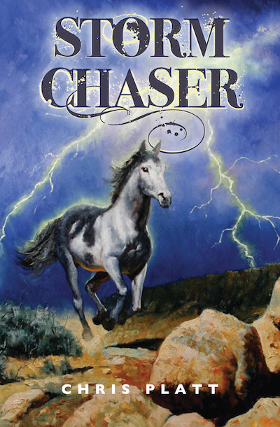 Buy Storm Chaser at Amazon