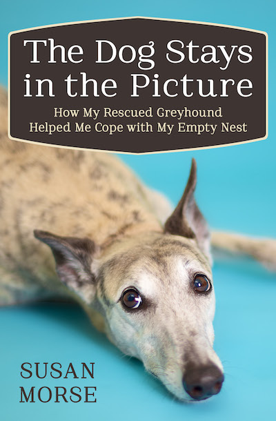 Buy The Dog Stays in the Picture at Amazon