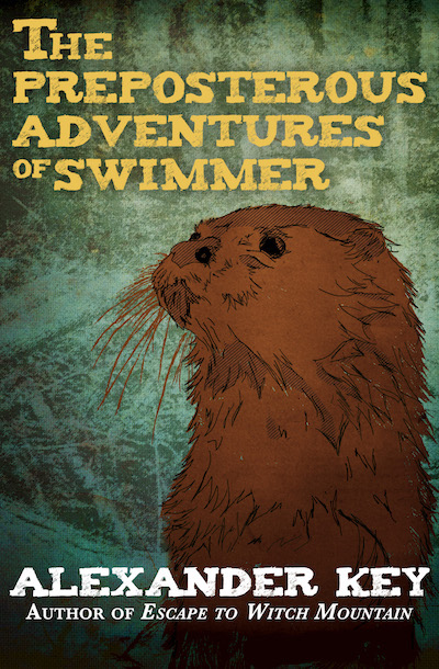 Buy The Preposterous Adventures of Swimmer at Amazon
