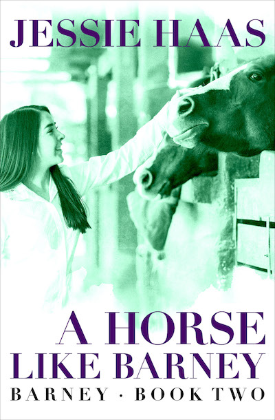 Buy A Horse like Barney at Amazon