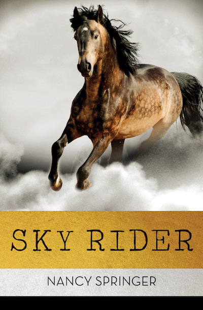 Buy Sky Rider at Amazon