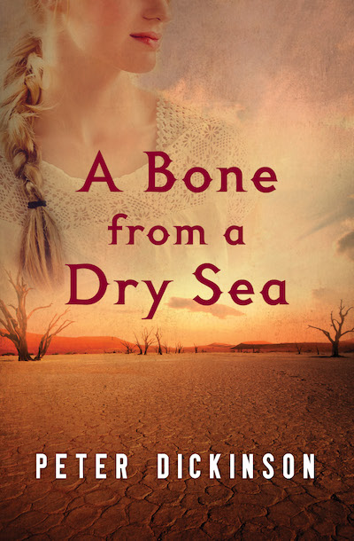 Bone Dry: An Erotic Crime Thriller