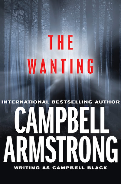Buy The Wanting at Amazon
