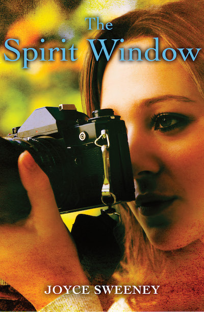 Buy The Spirit Window at Amazon