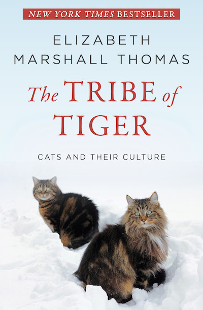 Buy The Tribe of Tiger at Amazon