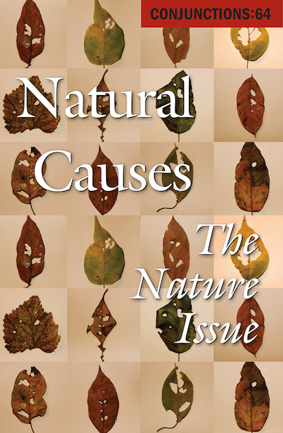 Buy Natural Causes at Amazon
