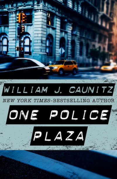 Buy One Police Plaza at Amazon