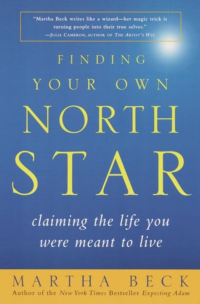 Buy Finding Your Own North Star at Amazon