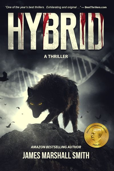 Buy Hybrid: A Thriller at Amazon