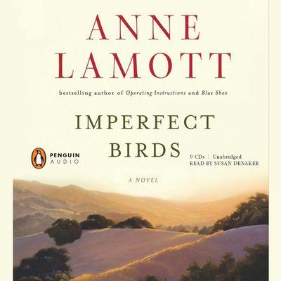 Buy Imperfect Birds at Amazon