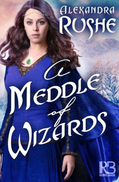 Buy A Meddle of Wizards at Amazon